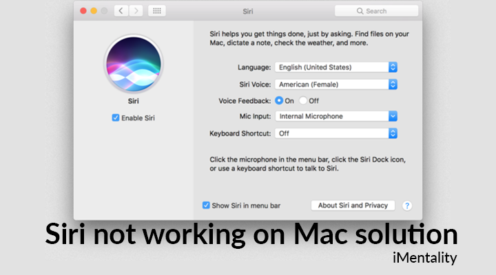 siri not working mac solution
